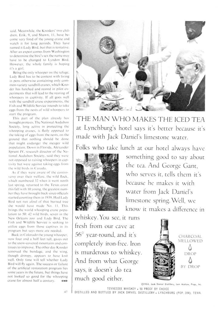 Jack Daniels Whiskey Print Ad from Sports Illustrated, 1965-02-01, p.049